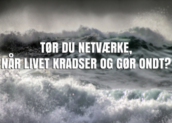 Guide til krisenetværk – Tør du netværke, når livet kradser og gør ondt?